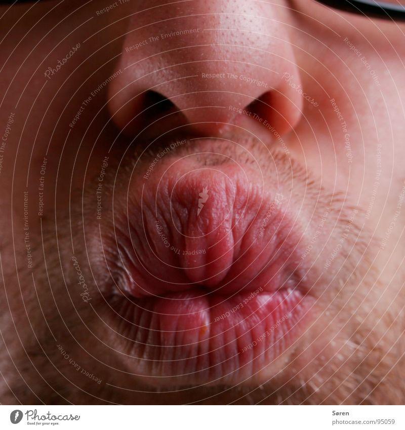 Big kiss Sulk Lips Kissing Smacker Pug nose Facial hair Grimace Face Oral Mouth Nose Designer stubble Funny Brash Distorted Pout