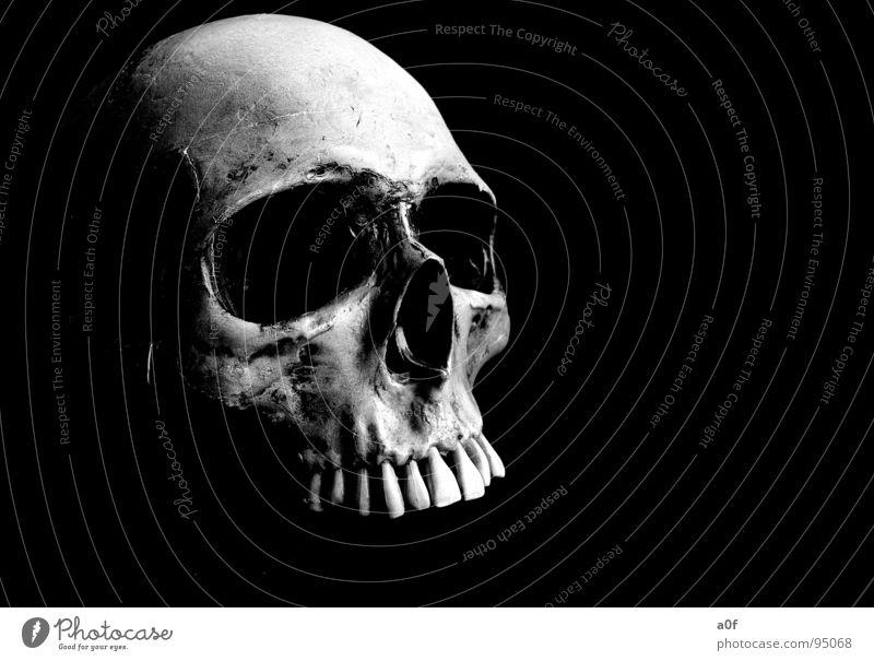 Death Fear Frightening Death's head Moral