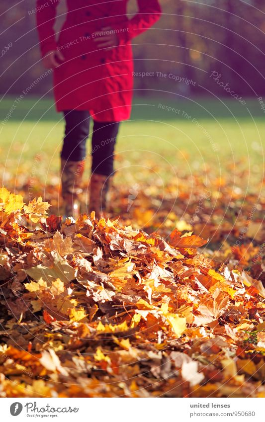 Woman Red Leaf Autumn Art Contentment Esthetic To go for a walk Autumn leaves Autumnal Coat Autumnal colours Early fall Autumnal weather Deciduous forest Automn wood