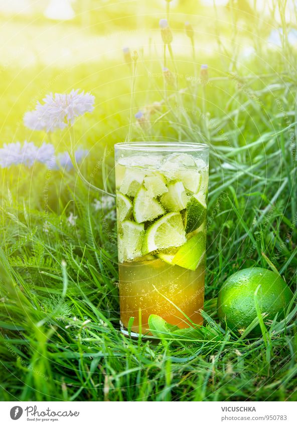 Iced tea with lime in the garden flowers Food Fruit Beverage Cold drink Lemonade Tea Alcoholic drinks Sparkling wine Prosecco Longdrink Cocktail Glass Lifestyle