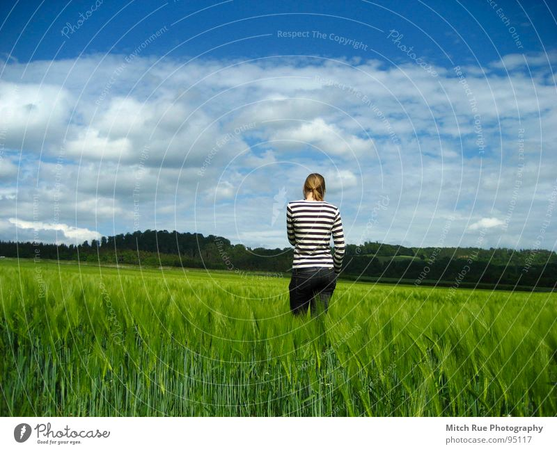 born to be FREE 2 Longing Miss Emotions Spring Calm Grass Clouds Infinity Frictionless Thought Freedom Stripe Horizon Green Field Grief Beautiful Meadow Nature
