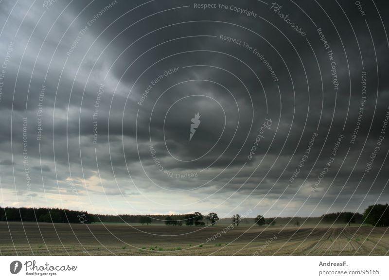 Sky Summer Clouds Landscape Rain Weather Field Wind Gale Storm Americas Thunder and lightning Cornfield Maize Tornado Hurricane