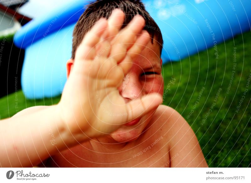 POOL boy Swimming pool Meadow Summer Green Hand Wet Beautiful Blue pool boy pool house Garden Sun yard backyard hide Skin Weather protection suntanic Water