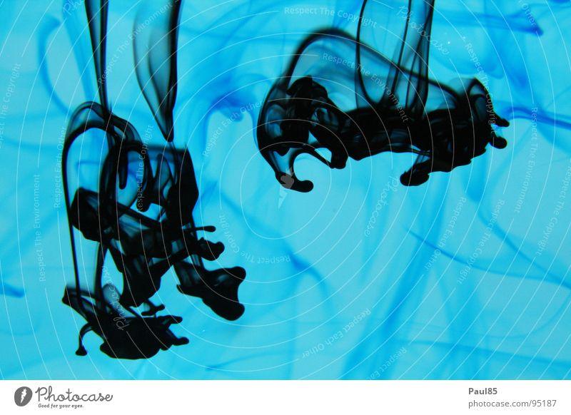 Water Ocean Blue Black Animal Drops of water Deep Navigation Aquarium Eerie Ink