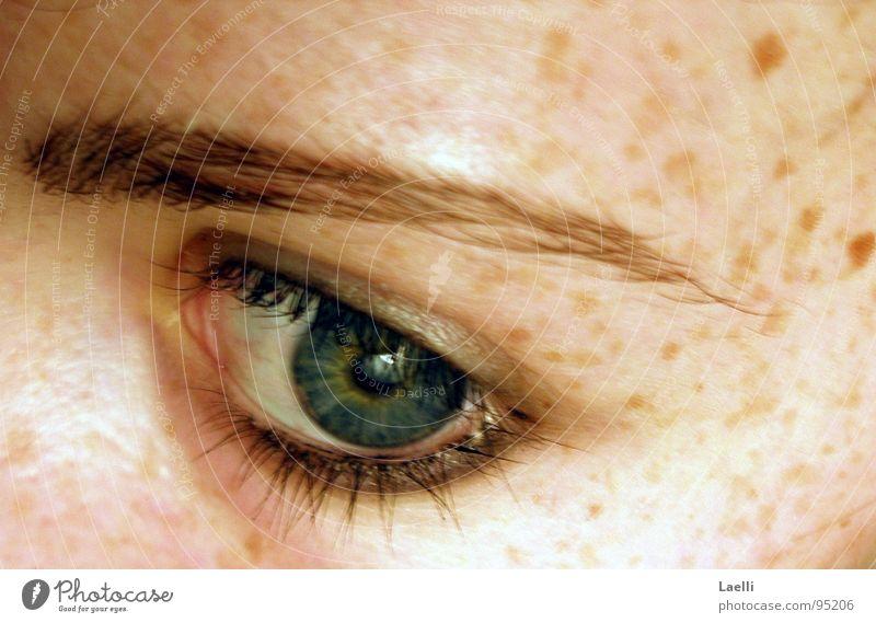 Green Blue Face Eyes Skin Longing Pallid Freckles Eyelash Eyebrow Pupil Iris