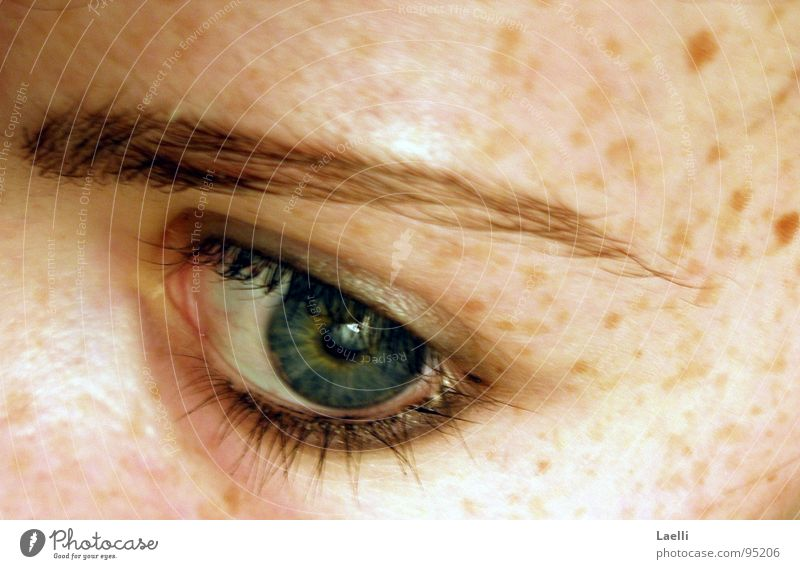 Green Blue Face Eyes Skin Longing Pallid Freckles Eyelash Eyebrow Pupil Iris