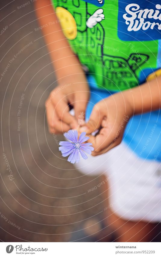 Smile! Child Boy (child) Hand Fingers 1 Human being 3 - 8 years Infancy T-shirt Happy Might Safety (feeling of) Warm-heartedness Love Fragrance Relaxation