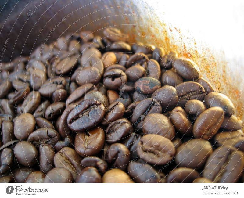 Lifestyle Coffee Espresso Beans Aromatic Cappuccino Coffee bean