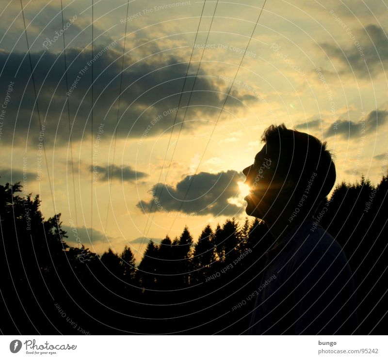 Human being Man Sky Tree Sun Face Clouds Nutrition Forest Dark Head Lighting Background picture Horizon Might Cable