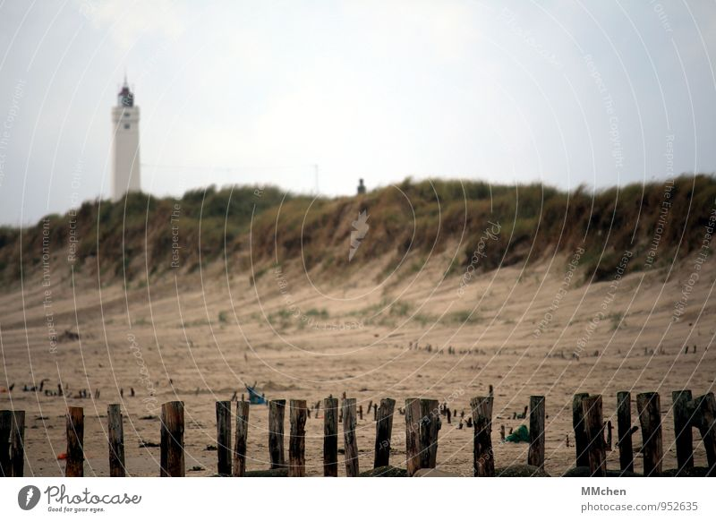 Obstacle course Leisure and hobbies Vacation & Travel Tourism Trip Beach Ocean Nature Sand Sky Autumn Grass Hill Coast North Sea Discover Relaxation To enjoy