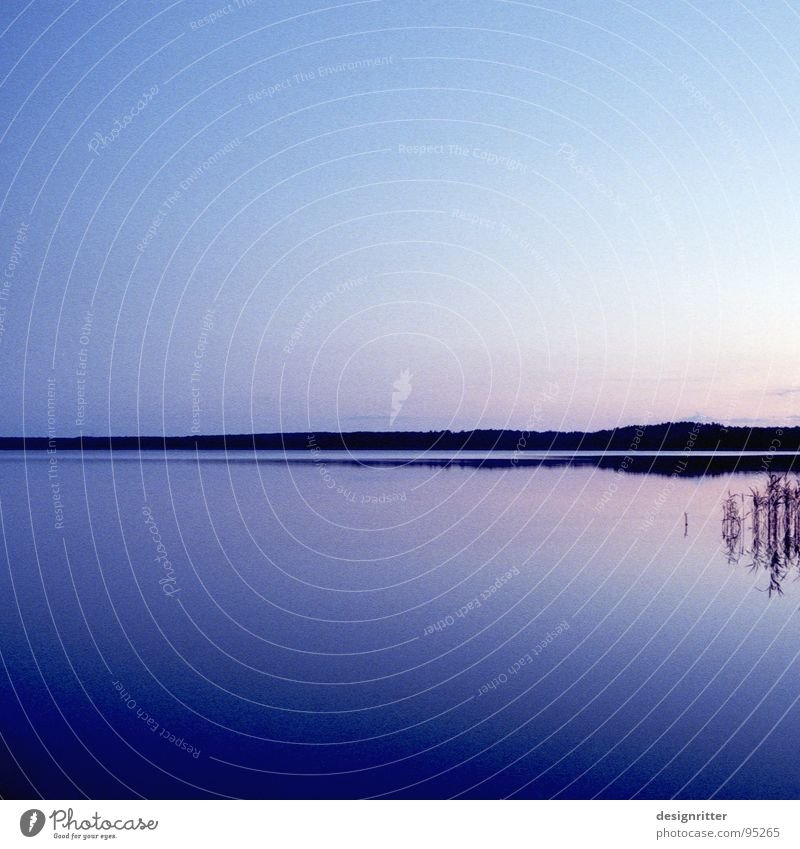 Silence over Mecklenburg Mecklenburg-Western Pomerania Germany Brandenburg Lake Mirror Covers (Construction) Peace Water Smoothness Calm Peaceful