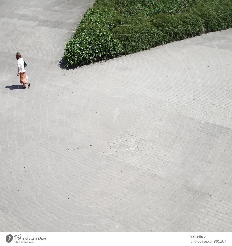 Woman Human being Green City Summer Relaxation Above Gray Air Park Earth Going Walking Concrete Lanes & trails Floor covering