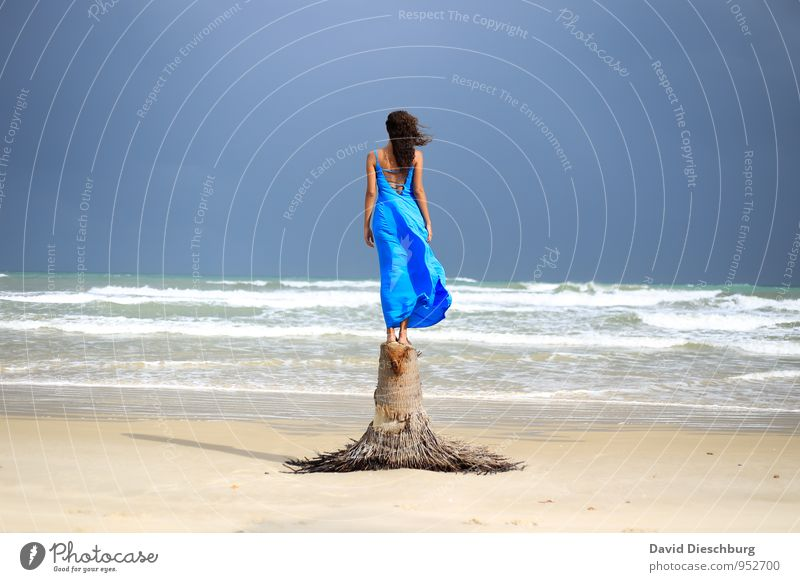 Human being Sky Vacation & Travel Youth (Young adults) Blue White Summer Tree Young woman Relaxation Ocean Landscape Calm 18 - 30 years Beach Adults