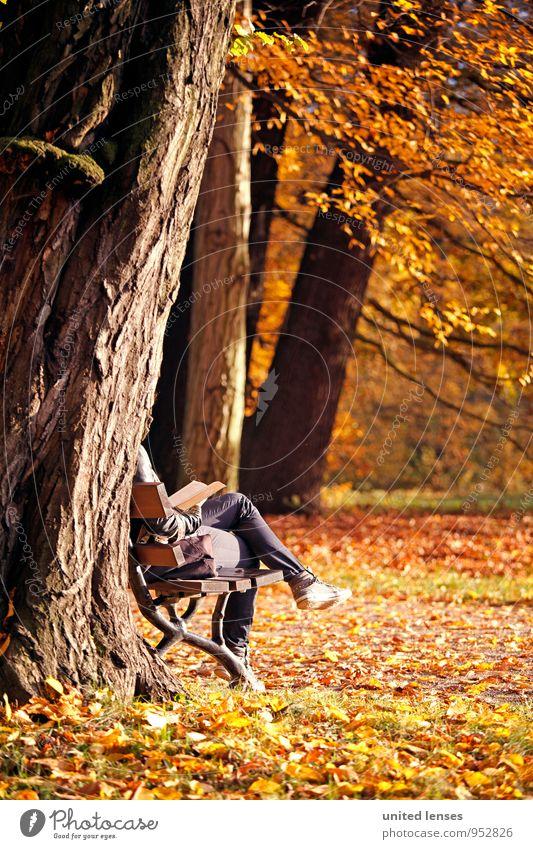Woman Tree Relaxation Loneliness Autumn Art Park Weather Orange Idyll Contentment Sit Esthetic To enjoy Book Romance