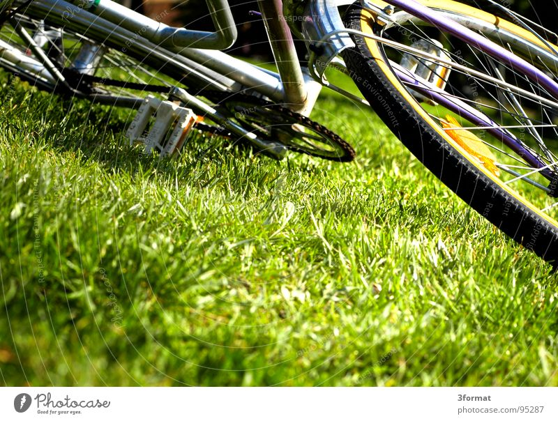 Vacation & Travel Summer Joy Relaxation Meadow Freedom Lanes & trails Grass Funny Contentment Bicycle Leisure and hobbies Lie Trip Break
