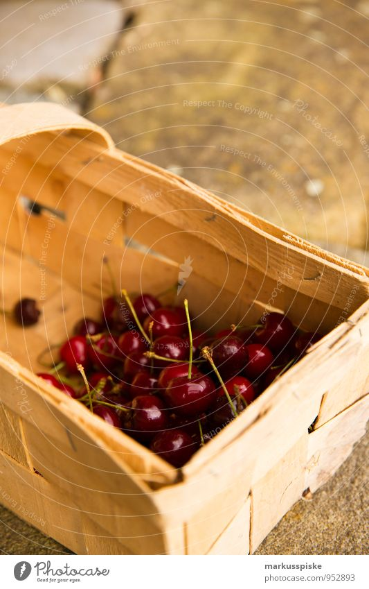 cherry harvest Food Fruit Cherry Nutrition Picnic Organic produce Vegetarian diet Diet Finger food Healthy Eating Harmonious Well-being Living or residing