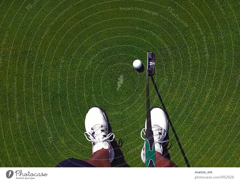 D hole... but where? Mini golf Golf course Golf ball Golf club putter Sports Ball Young man Youth (Young adults) Man Adults Legs Feet 1 Human being Summer Grass