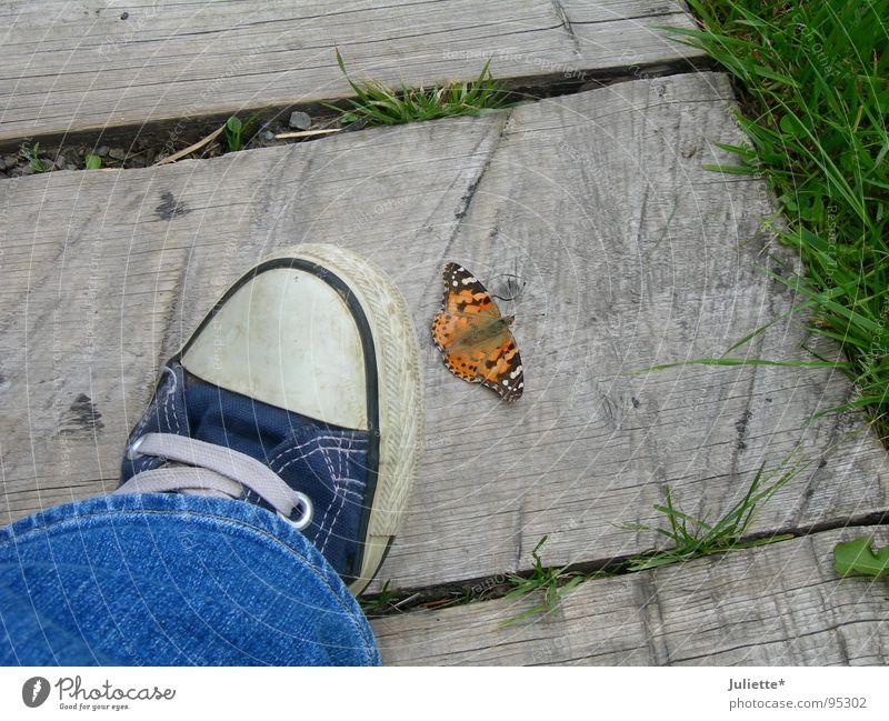 Blue Colour Life Legs Jeans Dangerous Threat Butterfly Chucks