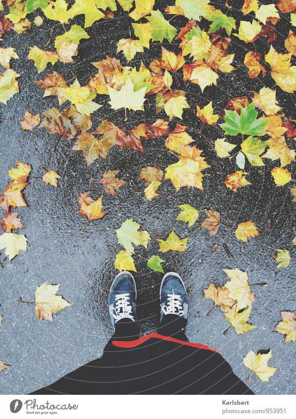 Tuesdays: Rain Healthy Leisure and hobbies Freedom Hiking Sportsperson Jogging Human being Abdomen 1 Nature Autumn Weather Bad weather Leaf Maple tree