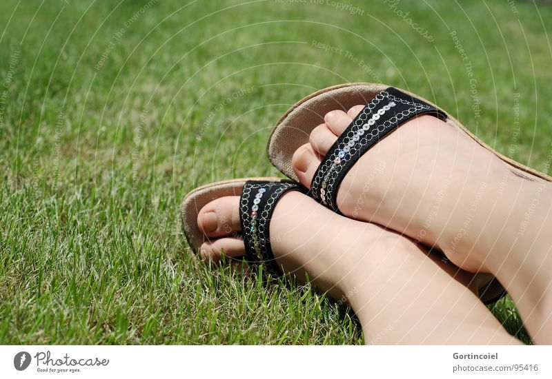 Woman Green Summer Adults Meadow Grass Legs Feet Footwear Glittering Skin Lie Lawn Sunbathing Young woman Toes