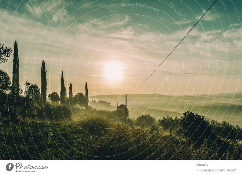 Tuscia {1} Harmonious Relaxation Calm Vacation & Travel Tourism Far-off places Freedom Summer Sun Environment Nature Landscape Sky Sunrise Sunset Sunlight Plant