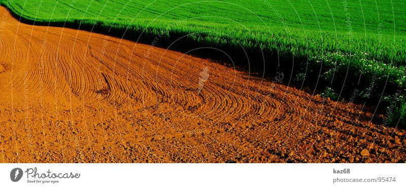 Nature Green Red Environment Lanes & trails Line Brown Background picture Work and employment Field Earth Floor covering Tracks Agriculture Border Wheat