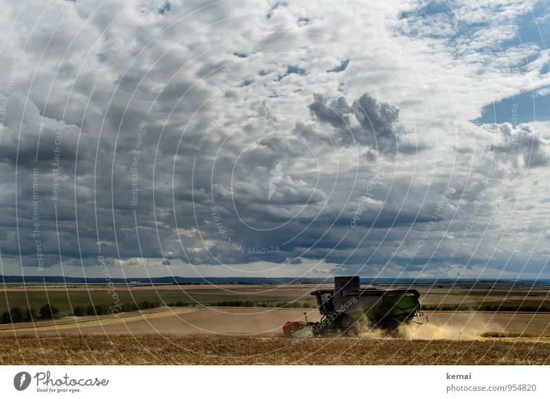 He that soweth the wind shall reap the storm. Summer Environment Landscape Sky Clouds Storm clouds Sunlight Weather Wind Agricultural crop Field Driving Dark