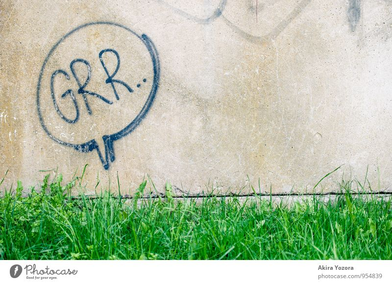 Grr. Grass Meadow Wall (barrier) Wall (building) Characters Threat Fresh Town Gray Green Black Dangerous Grouchy Animosity Aggression Colour photo Exterior shot