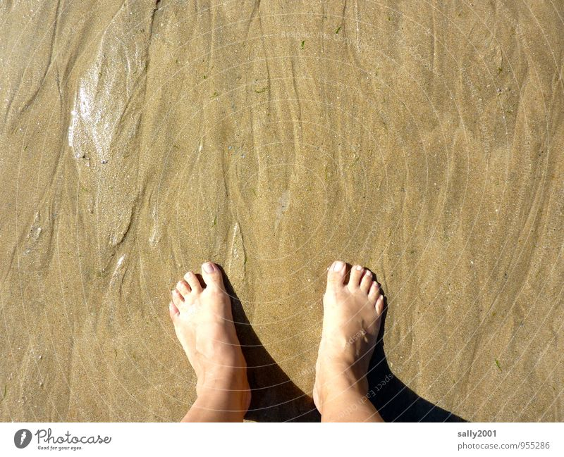Human being Vacation & Travel Relaxation Joy Beach Adults Feminine Happy Healthy Freedom Swimming & Bathing Sand Brown Feet Contentment Stand
