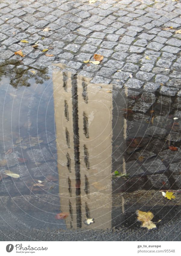 Skyscraping. Grounded. High-rise Reflection Puddle Cobblestones Gray Water