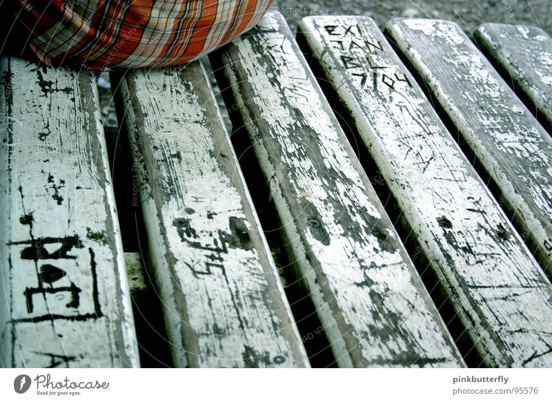 Old White Gray Orange Sit Corner Bench Hind quarters Transience Boredom Wooden board Checkered Crouch Carving