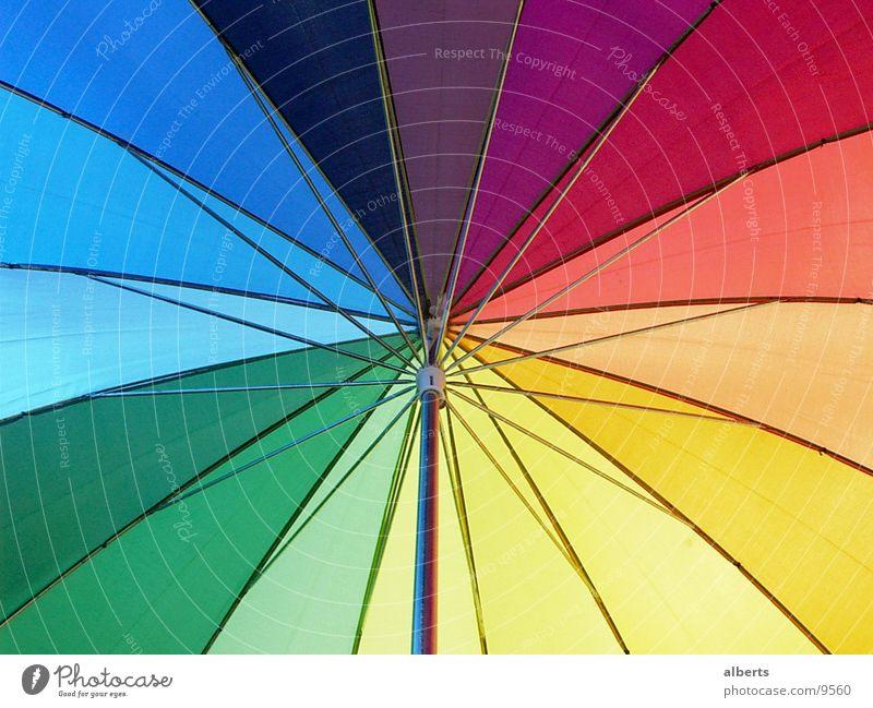 Umbrella Sun Rain Weather Living or residing Things