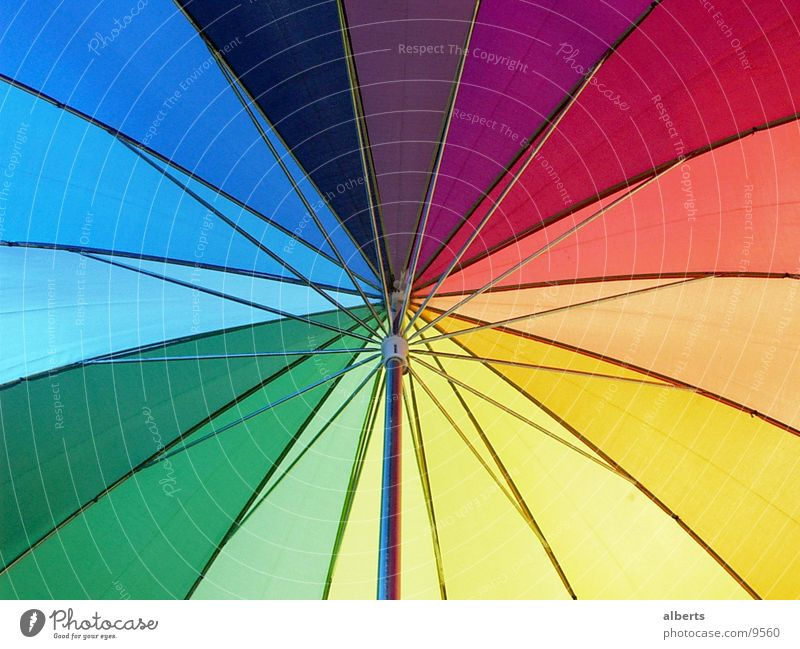 Umbrella Sun Weather Rain Living or residing Things Colour photo Multicoloured Exterior shot Detail Deserted Day Light