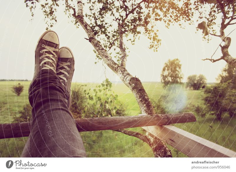 Nature Green Summer Sun Tree Relaxation Landscape Calm Far-off places Life Meadow Gray Contentment Field Bushes Footwear