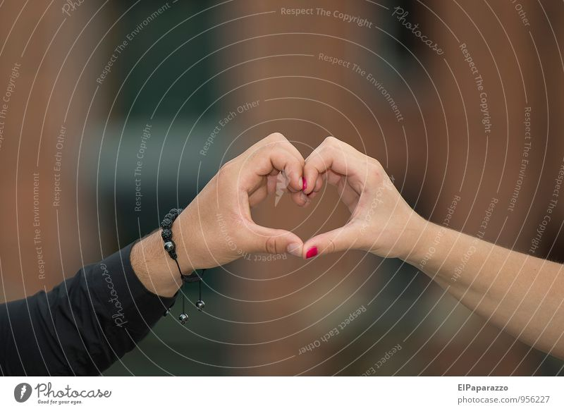 Love and trust Happy Wedding Couple Partner Hand Sign Heart Dream Together Eroticism Emotions Infatuation Loyalty Romance Honest Attachment Colour photo