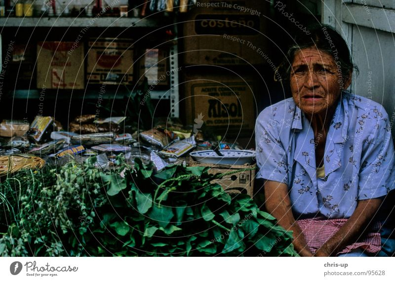 Herbs woman 2 Peru Lima Senior citizen Herbs and spices South America Americas Market trader Market stall Farmer Woman Vacation & Travel Work and employment