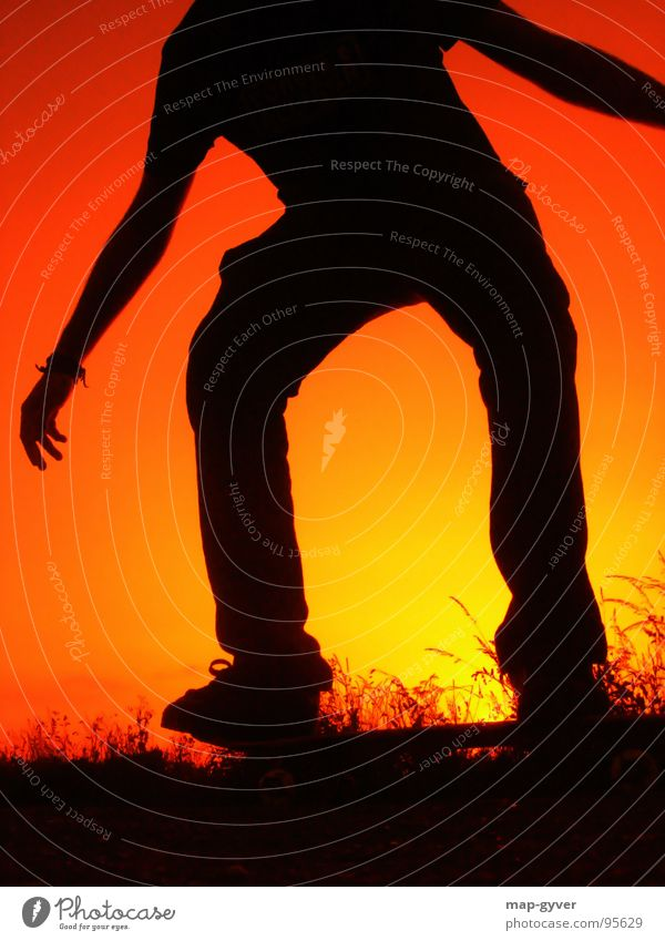 friday night skateboarding Leisure and hobbies Sports Cool (slang) Skateboarding Sunset sun evening Colour photo Copy Space bottom Neutral Background Silhouette