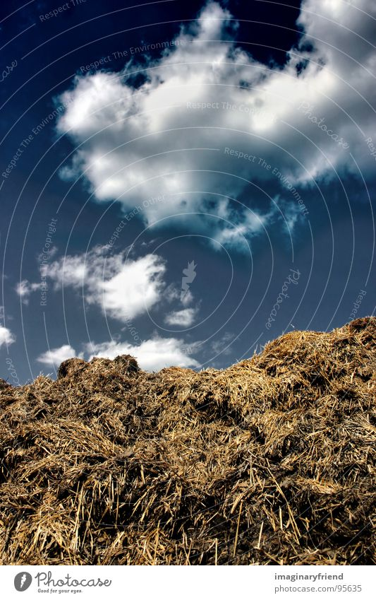 Sky Clouds Landscape Field Countries Agriculture Americas Trash Manure heap