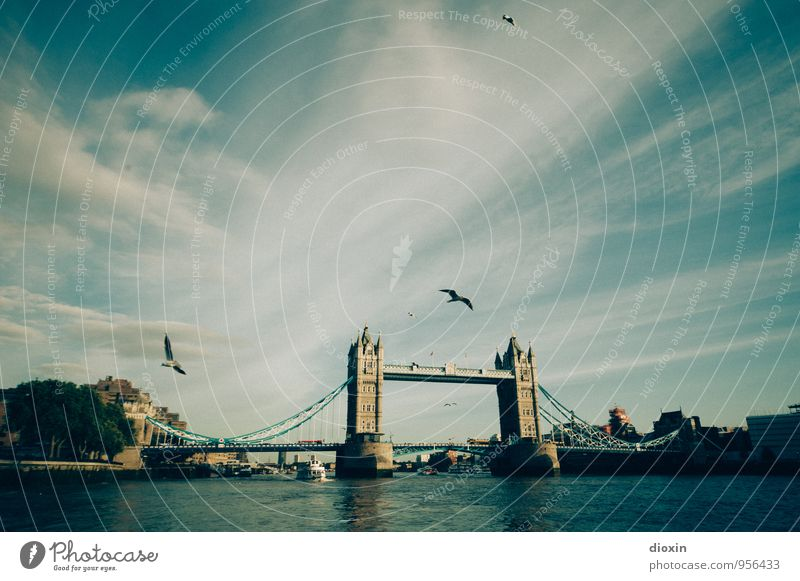 Give My Love To London Vacation & Travel Tourism Sightseeing City trip Sky Clouds River Themse England Great Britain Town Capital city Downtown Bridge