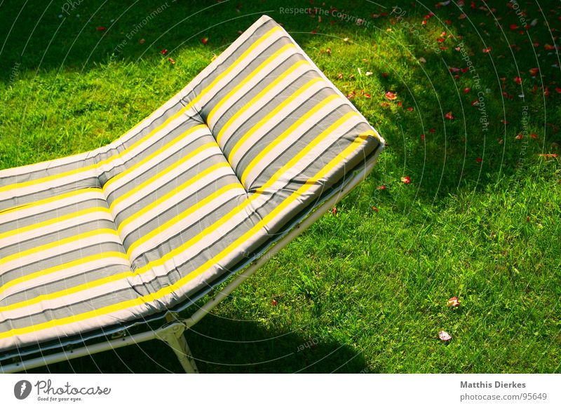 LYING STRIPES Couch Relaxation Yellow Striped Checkered Hypnotic Meadow Physics Hot Summer Perspiration Perspire Sleep Doze Rest Reading Dream Sunbathing Brown