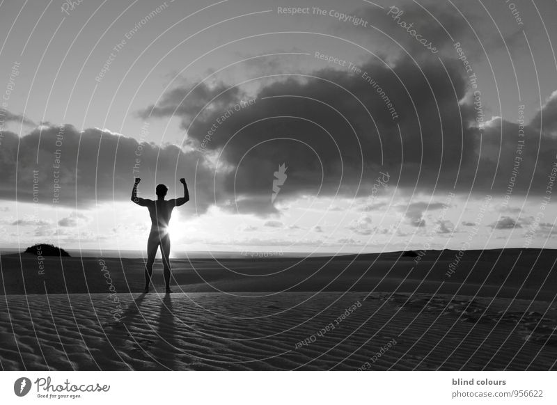 mâle évolution Art Esthetic Contentment Force Evolution Future Horizon Masculine Male nude Wellness Relaxation Freedom Hope Human being Living thing Man Life