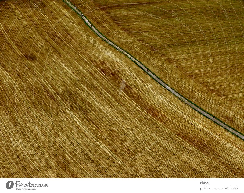 Rural arithmetic (without farmer) Structures and shapes Waves Field Street Lanes & trails Brown Harvest Late Flow Opposite Corner Smooth yield Furrow