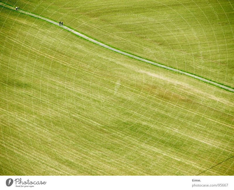 Green Street Lanes & trails Field Waves Harvest Smooth Furrow Flow Late Opposite