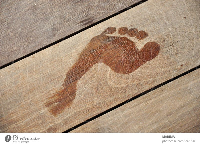 wet Footprint on wooden floor Relaxation Vacation & Travel Human being Nature Wood Wet Brown abstract Feet foot timber Wooden floor wooden planks holiday