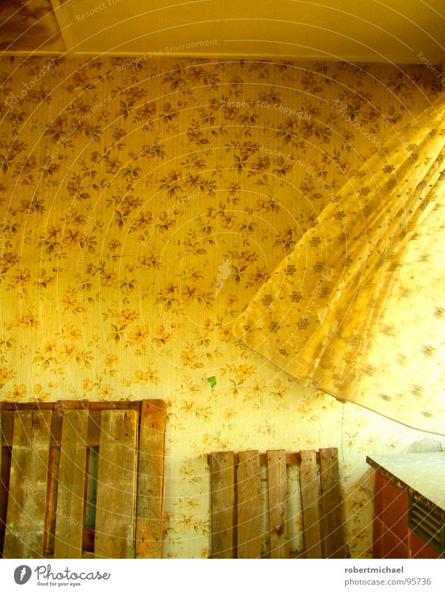 Old Sun Flower Calm Loneliness Window Wall (building) Wood Graffiti Wall (barrier) Air Bright Room Wind Lighting Empty