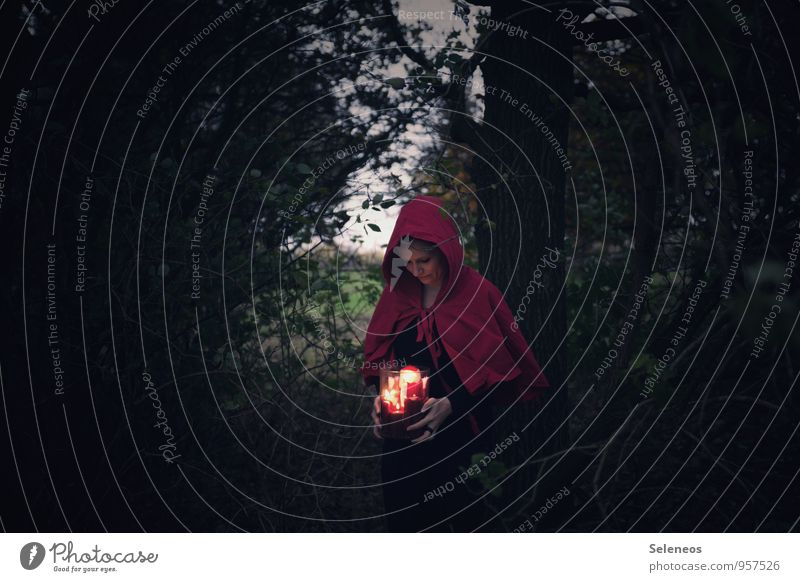candlelight Human being Feminine Woman Adults 1 Nature Tree Bushes Forest Hooded (clothing) Dark Candlelight shoulder stand Glass candle holder Colour photo