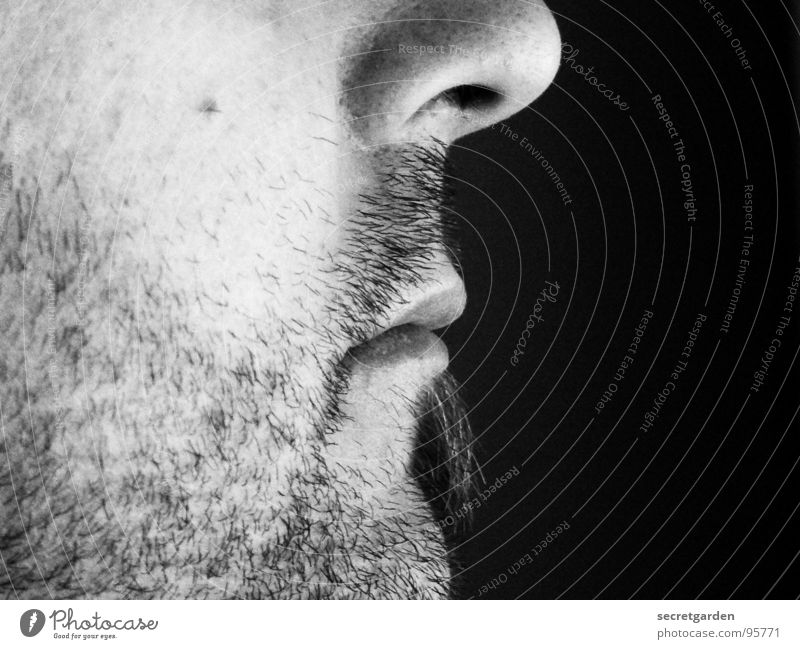 look to the right Man Silhouette Profile Facial hair Chin Moustache Calm Light Side Indifference Room Shave Masculine Meditation Black & white photo Close-up