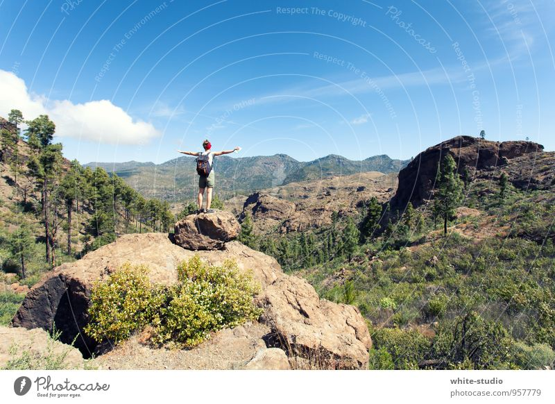 Ultimate Freedom Feminine 1 Human being Nature Sky Summer Mountain Hiking Infinity Happy Joie de vivre (Vitality) Authentic Relaxation Vacation & Travel Fitness