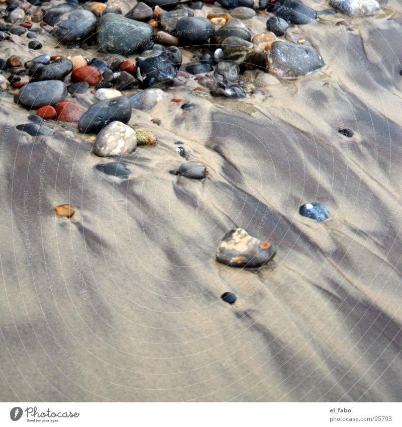 Ocean Beach Vacation & Travel Relaxation Stone Sand Coast Baltic Sea North Sea Rügen Schleswig-Holstein North Frisland Nordstrand island