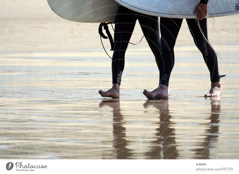 300 meters Surfer Ocean Beach Waves Surfboard Neoprene Seignosse Atlantic Ocean Low tide Coast Autumn Aquatics Water